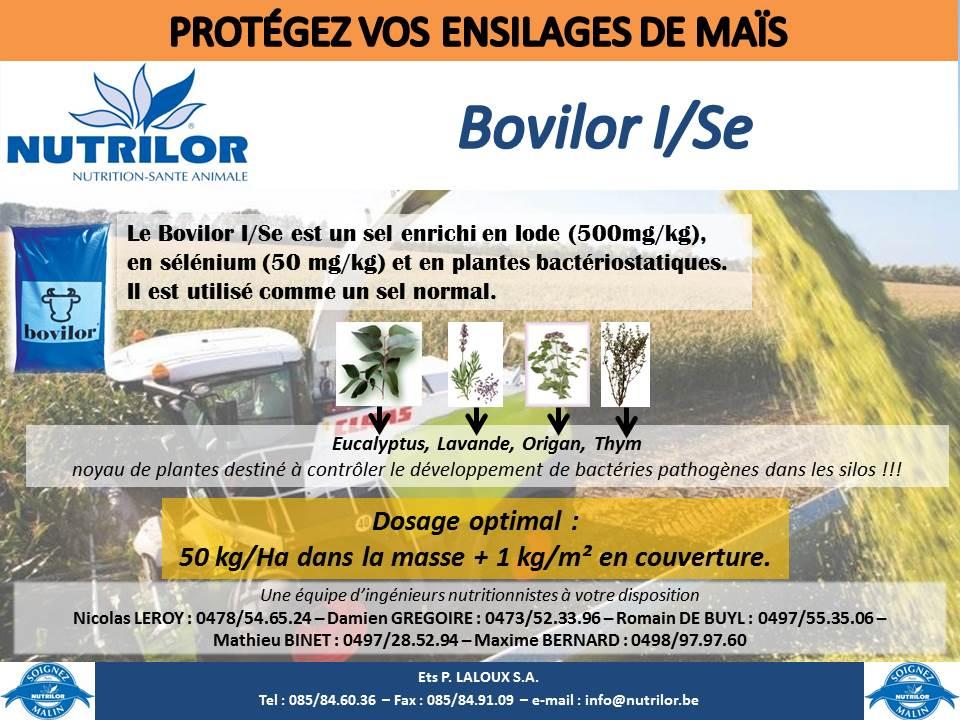 Bovilor I/Se Nutrilor conservation ensilage maïs